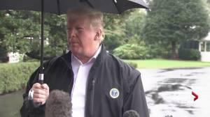 'Who cares': Trump comments on Elizabeth Warren DNA test