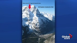 Avalanche shuts down Trans-Canada Highway near B.C.-Alta. Border