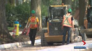 Heat wave can take its toll on some Edmonton workers