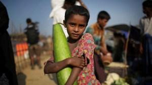Rohingya crisis a 'genocide', says Burmese scholar