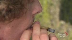 Durham Region reacts to marijuana legalization