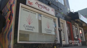 Calgary pot shops waiting for approvals concerned over 'disadvantages'