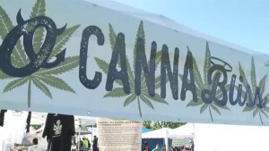 Record numbers expected to attend cannabis culture celebration at Vancouver's 4/20 rally