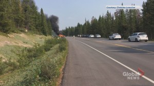 6 people killed in crash near Jasper