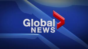 Global News at 5 Edmonton: Nov. 17