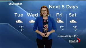 More rain on the way overnight, a low of 4 C