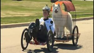 Moncton man constructs unique bicycle-cart for himself and his dog