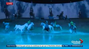 Cavalia Odysseo preview on Global Winnipeg