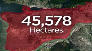 B.C. wildfires: More than 45K hectares torched by blazes