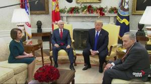 Trump says it's 'great honour' to meet Nancy Pelosi, Chuck Schumer