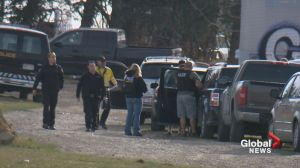 Neighbours of property searched  near Airdrie suspected something was up