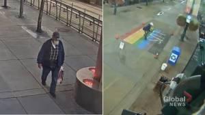 Calgary police identify suspects in Pride, trans crosswalk vandalism cases