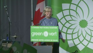 Federal Election 2015: Elizabeth May greets crowd