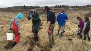 4,000 trees planted Saturday at Preston Pit in Selwyn Township
