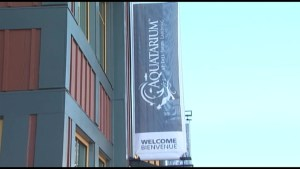 Brockville Mayor denies Aquatarium conflict