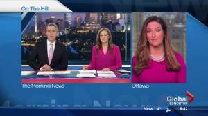 Vassy Kapelos weighs in on NDP convention, Tom Mulcair's leadership review (02:59)