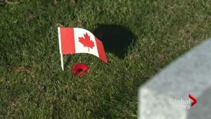 Movement to place a poppy on every grave of Canadian veterans
