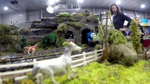 All aboard! Model train exhibit raises funds for Sun Youth