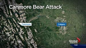 Serious bear attack near Banff National Park