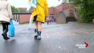 Nova Scotia parents question drop in supports for students with autism