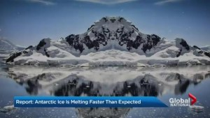 Antarctic ice is melting faster than expected