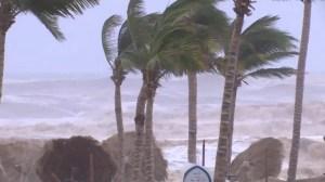 Multiple people dead after cyclone hits Yemen island