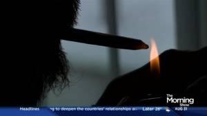 """Prince of Pot"" Marc Emery on the future of marijuana legalization in Canada"