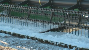 Edmonton-area farmers grapple with difficult year