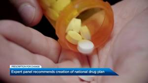 Expert panel recommends creation of a national drug plan