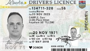 New Alberta driver's licence and ID cards to save $1M per year, province says