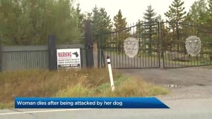 Woman dies after being attacked by her dog