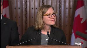 Liberals accused of 'mischaracterizing' findings of consultations