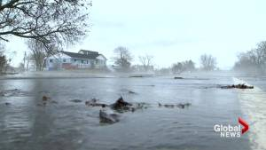 NB EMO says water levels along northern St. John River to peak Tuesday