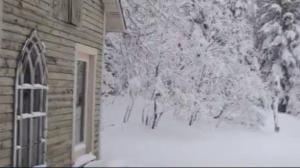30+ centimetres of snow hit parts of Newfoundland