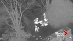 Police nab alleged teen candy thieves with help of helicopter at Canada's Wonderland