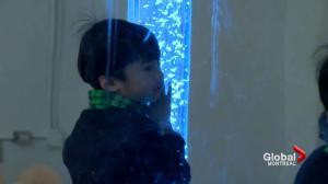 Autism services in Quebec schools