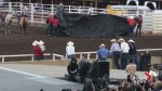 Horse euthanized after incident at Calgary Stampede chuckwagon race Wednesday