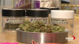 'A very bold move': Halifax store's decision to sell marijuana receiving lots of support