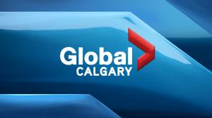 Calgary's night market returns for November