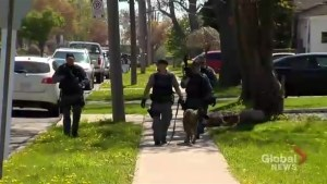 1 shot, 3 injured in violent home invasion in Hamilton