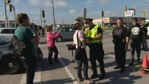 Police clash with protesters, media in heated confrontation following accident with truck transporting pigs