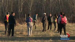 People take part in central Alberta search effort to find missing woman