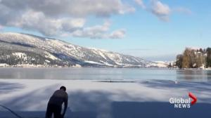Amazing rescue of a dog from a frozen lake caught on tape