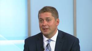 Andrew Scheer responds to Liberal proposal to ban conversion therapy