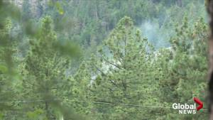 Air tankers drop retardant on West Kelowna wildfire (00:49)