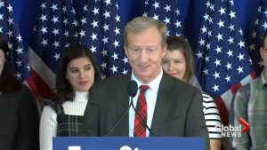 Tom Steyer buys copies of 'Fire and Fury' for all 535 members of congress