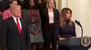Melania Trump: 'We cannot tolerate these cowardly attacks'