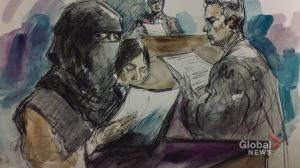 Toronto-area woman admits in court that attack at Canadian Tire was 'for ISIS'