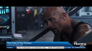 Fate of The Furious, Gifted, Maudie: See It or Skip It?