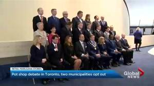 Toronto council debates cannabis retail stores and transit